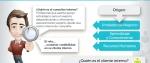 infografía_el_rol_del_consultor_interno_des.jpg