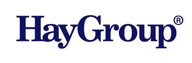 haygroup_logo.jpg