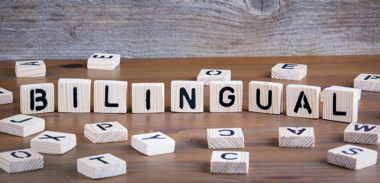Bilingual-ok.jpg