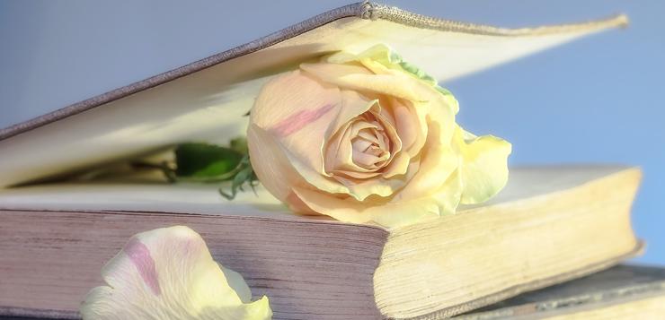 libro-y-rosa-oki.jpg