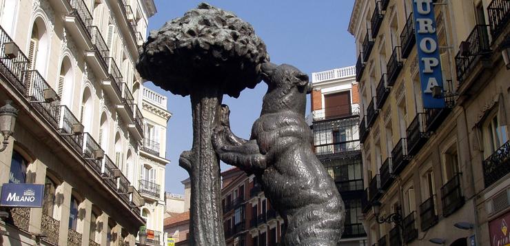 oso-madroño-oki.jpg