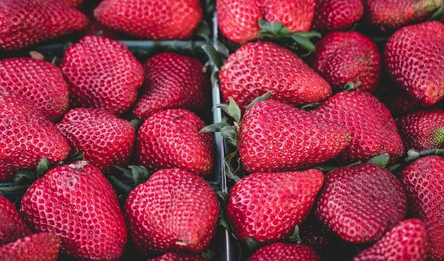 fresas-oki.jpg