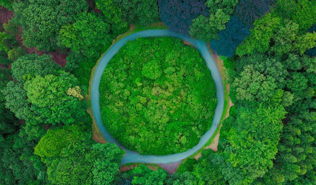 sostenibilidad edenred