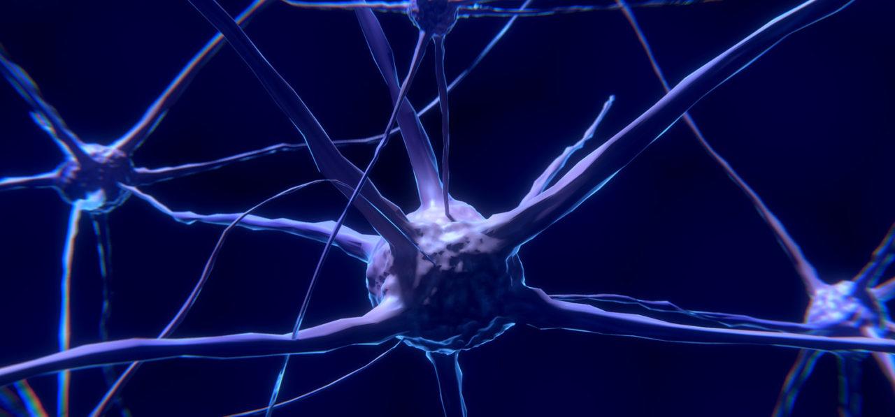 cerebro-oki-1280x597.jpg