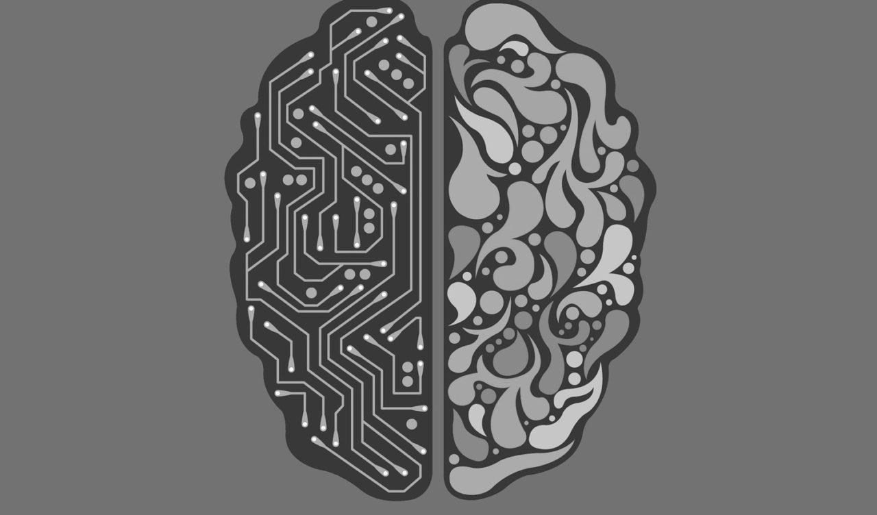 cerebro-ok-1280x752.jpg